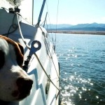 Beau Sailing Colorado