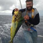 Dolphin catch!