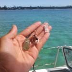 Sea glass jewelry I made~