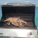 Lobster breakfast
