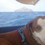 Redondo-Island-behind-Beau