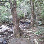 Hiking-the-boulders-of-Guadeloupe