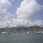 Wow-we-have-never-seen-so-many-boats-in-one-harbour