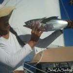 Blackfin tuna!